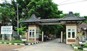 RSJD Rumah Sakit Jiwa Daerah