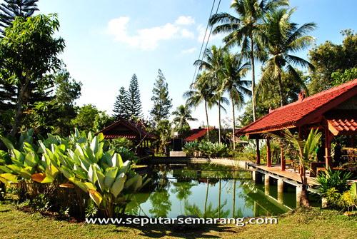 kolam pemancingan tlogo plantation