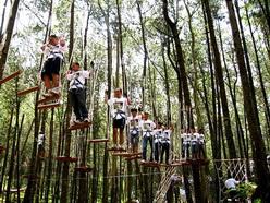 berjalan di atas pohon kopeng treetop
