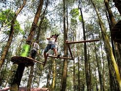 permainan dan tantangan treetop