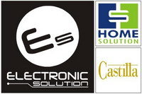 electronic solution logo