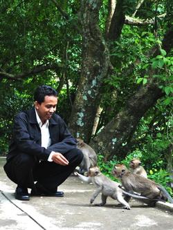 pengunjung goa kreo memberi makan monyet
