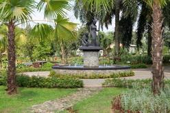 taman yang rindang