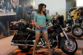 Foto Model Harley Davidson Wanita Cantik Seksi