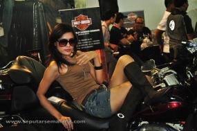 Gambar Motor Harley Davidson Model Seksi