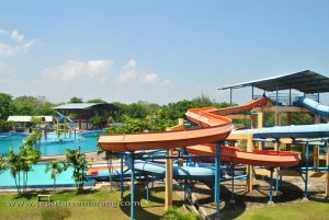 Papan Luncur Marina